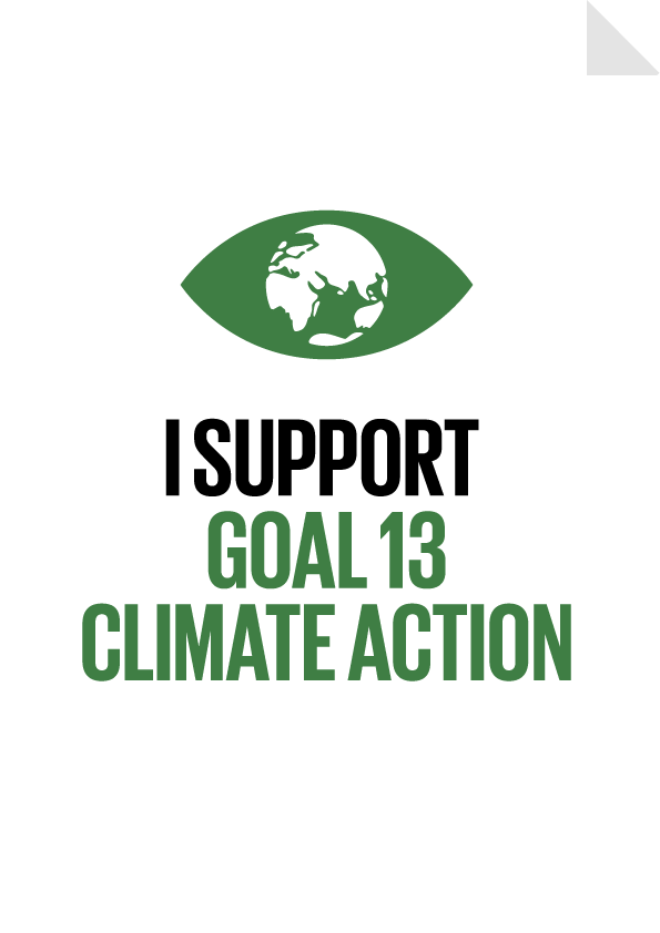 Goal 13 - Climate Action Poster