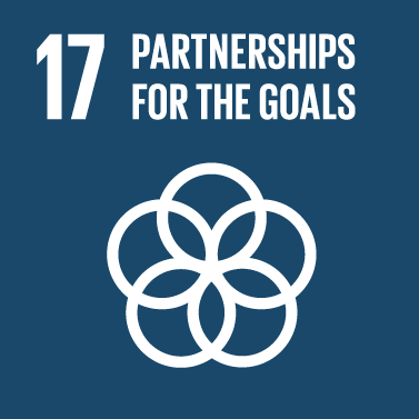 Partnerships for the Goals Icon