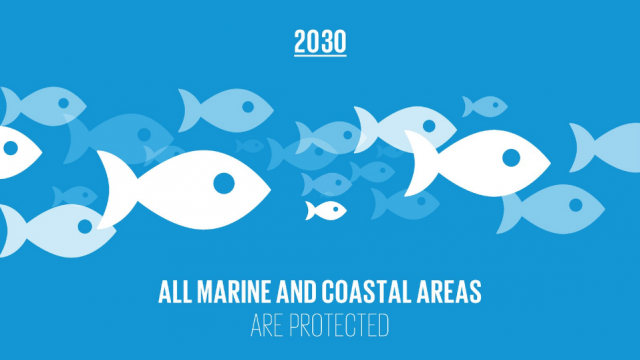 Coverage of protected marine areas