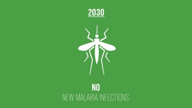Malaria incident cases